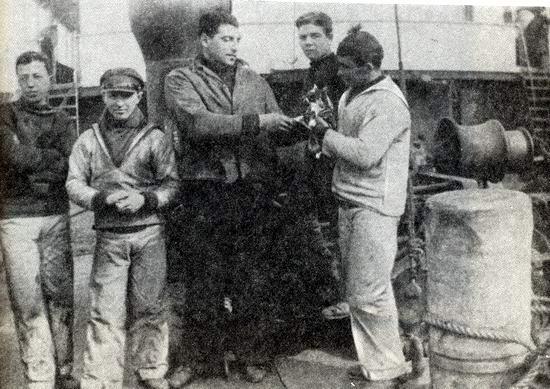 Kuczyński, Komorek, Borchadt